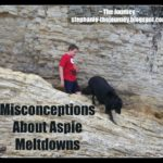 Misconceptions About Aspie Meltdowns