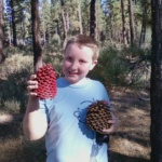 Ruby Pinecone ~ Wordless Wednesday